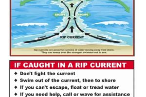 Rip Current Safety Rules