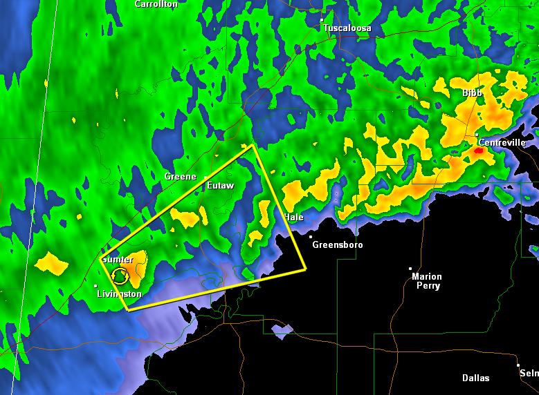 Severe Thunderstorm Warning : Greene/Hale/Sumter Counties