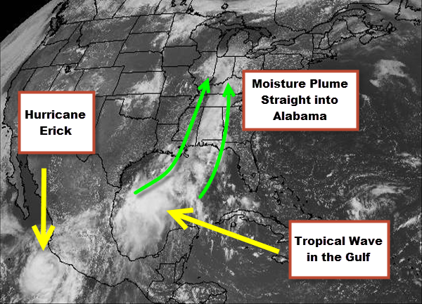A Tropical Plume of Moisture