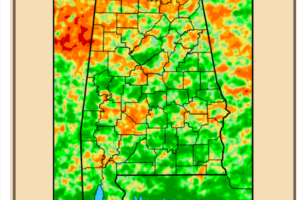 DroughtWatch:  365 Day Deficit at BHM Wiped Out, But Varying Short Term Moisture Needs