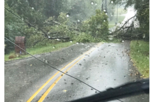 Lots of Trees Down, A Major Traffic Accident Affecting SB I-459