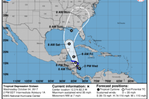 Early Afternoon Notes On TD 16