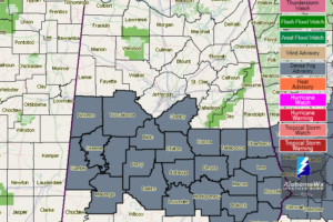 Dense Fog Advisory For The Southern Half of Central Alabama Until 9AM Monday