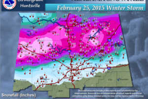 The Historic 2015 Snowstorm Across North Alabama