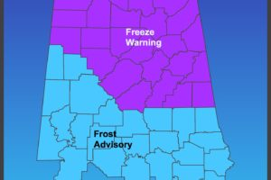 Freeze Warnings and Frost Advisory Issued for Early Thursday Morning; Protect Tender Vegetation