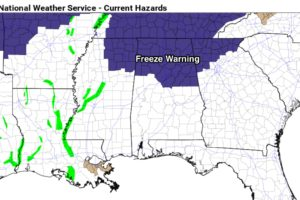 Freeze Warning Tomorrow Morning