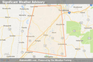 Significant Weather Advisory For Southwestern Tuscaloosa,  Southeastern Pickens, Greene, Hale And Central Sumter Counties Until 4:00 PM CDT