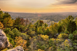 On This Day In Alabama History: Ruffner Mountain Nature Coalition Was Formed