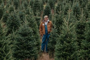 How Your Christmas Tree Can Impact The Environment