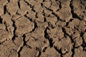 Auburn University Professor, Team Discover Breakthrough Process That Will Boost Ability To Predict Drought