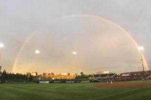 There's No Sunshine… In Baseball? (Photo Credit: Sharon Sullivan)