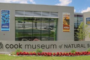 Alabama's Cook Museum Of Natural Science Educates And Entertains All Ages