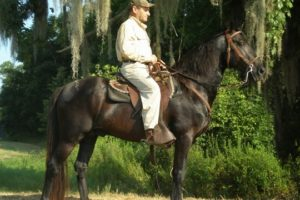 Alabama Legacy Moment: McCurdy Plantation Horse