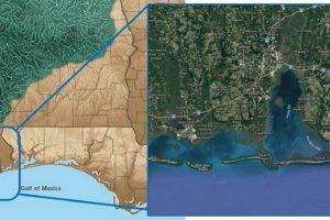 Auburn University, USA Researchers Seek To Ensure Resilience Of Gulf Species