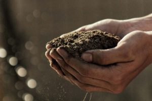 Soil – Little Word, Big Meaning