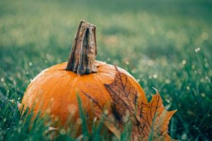 Weather Xtreme: No Frightening Weather for Halloween… or Through the Next Seven Days