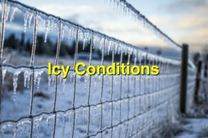 NWS Huntsville's Special Weather Statement on Icy Conditions in North Alabama