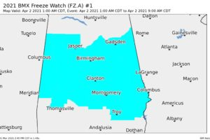 Freeze Watch Issued for Central Alabama for Early Friday Morning