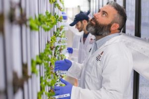 Alabama Newscenter — Auburn University Using High-Tech Shipping Containers to Grow Produce for Campus Dining