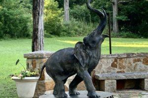 Alabama Newscenter — Miss Fancy the Elephant Returns Triumphant to Birmingham's Avondale Park